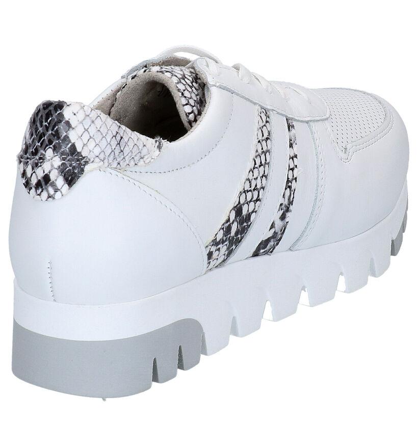 Tamaris Chaussures à lacets en Blanc en cuir (270119)