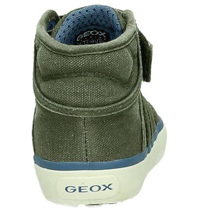 Geox Baskets hautes  (Bleu clair ), Vert, pdp