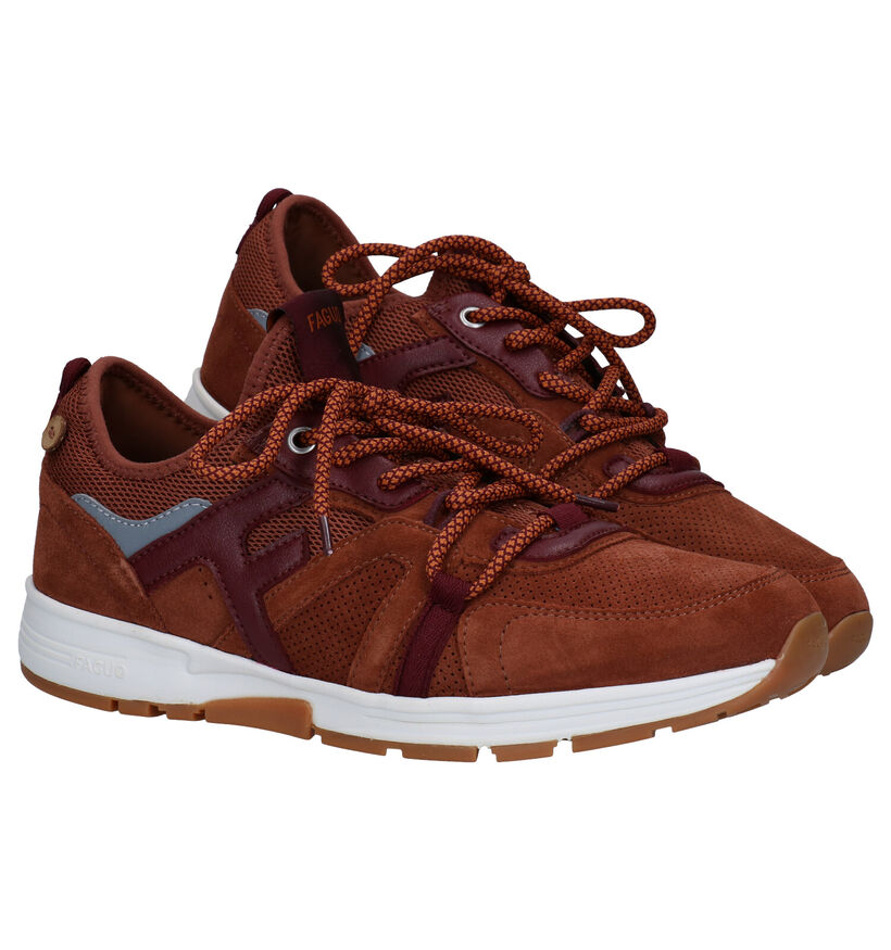 Faguo Willowsocks Cognac Sneakers in daim (280265)