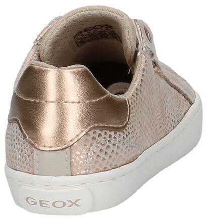 Geox Baskets basses en Beige en cuir (210497)