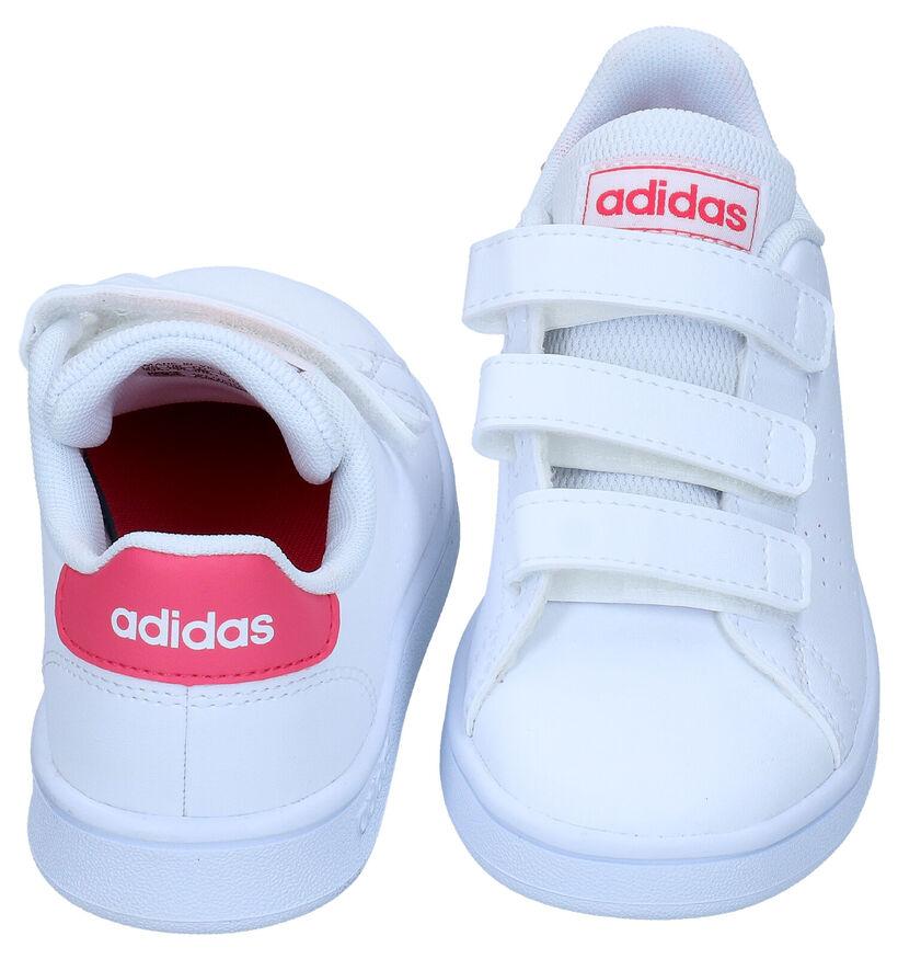 adidas Advantage Witte Sneakers in kunstleer (284710)