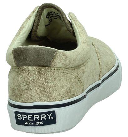 Sperry Striper Beige Lage Sneakers, Beige, pdp