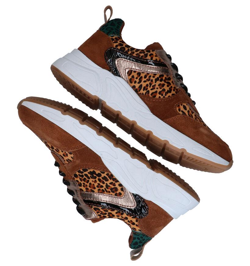 Milo & Mila Carocel Cognac Sneakers in leer (278470)