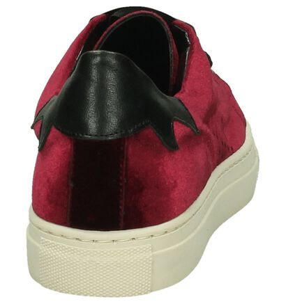 Zwarte Velours Sneaker Gio+ in velours (195972)