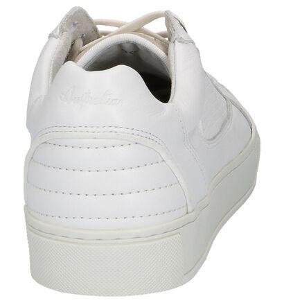 Australian Baskets basses en Blanc en cuir (213065)