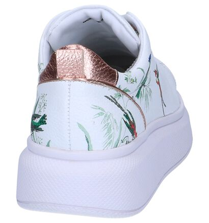 Witte Sneakers Ted Baker Ailbe 4 in leer (241709)
