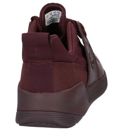 Taupe Lage Geklede Sneakers Timberland Kiri Up Knit in stof (220824)