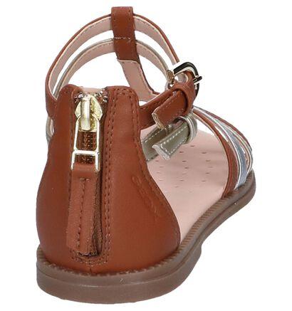 Geox Sandales en Cognac en simili cuir (245021)