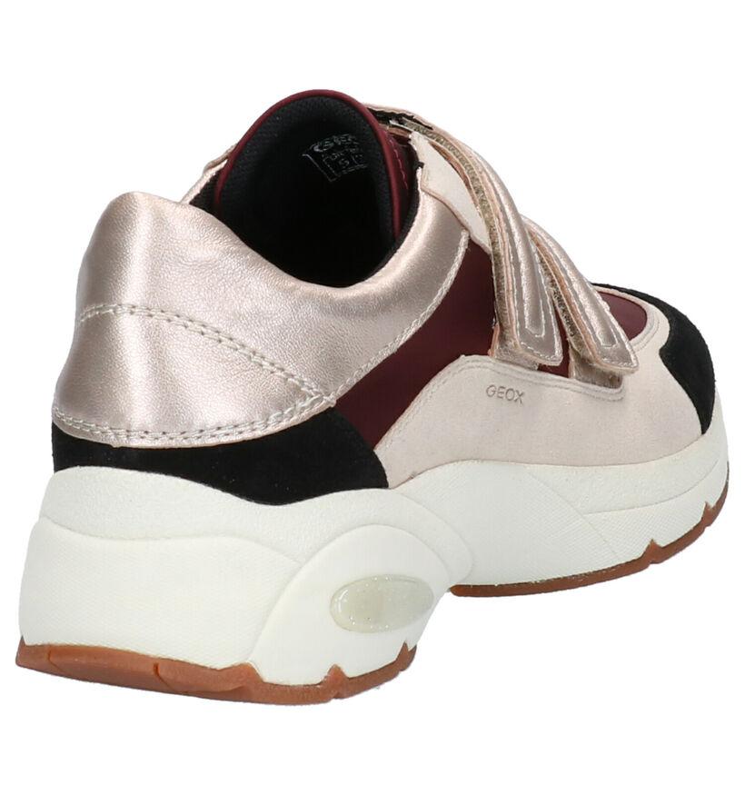 Geox Baskets basses en Beige foncé en cuir (255269)