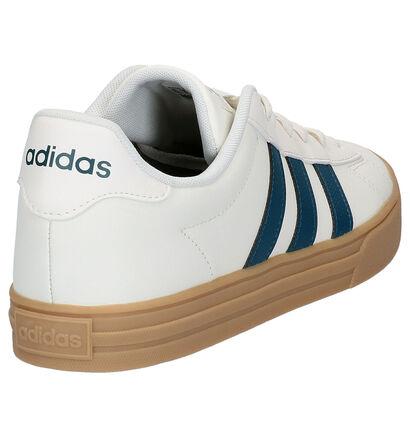 adidas Daily 2.0 Baskets en Blanc en cuir (237099)