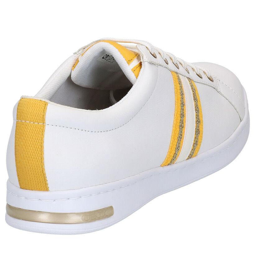 Geox Chaussures à lacets en Blanc en textile (266829)