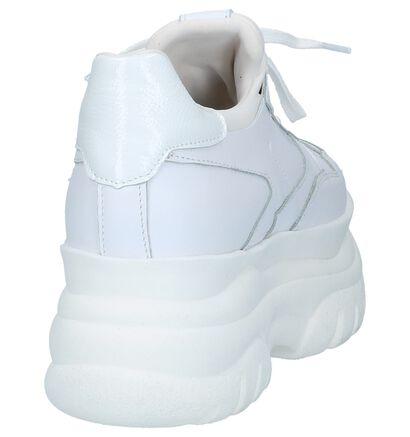 Poelman Baskets basses en Blanc en cuir (229911)