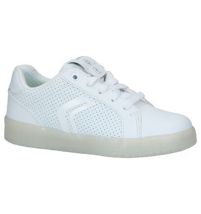 Geox Baskets basses en Blanc en imitation cuir (223139)