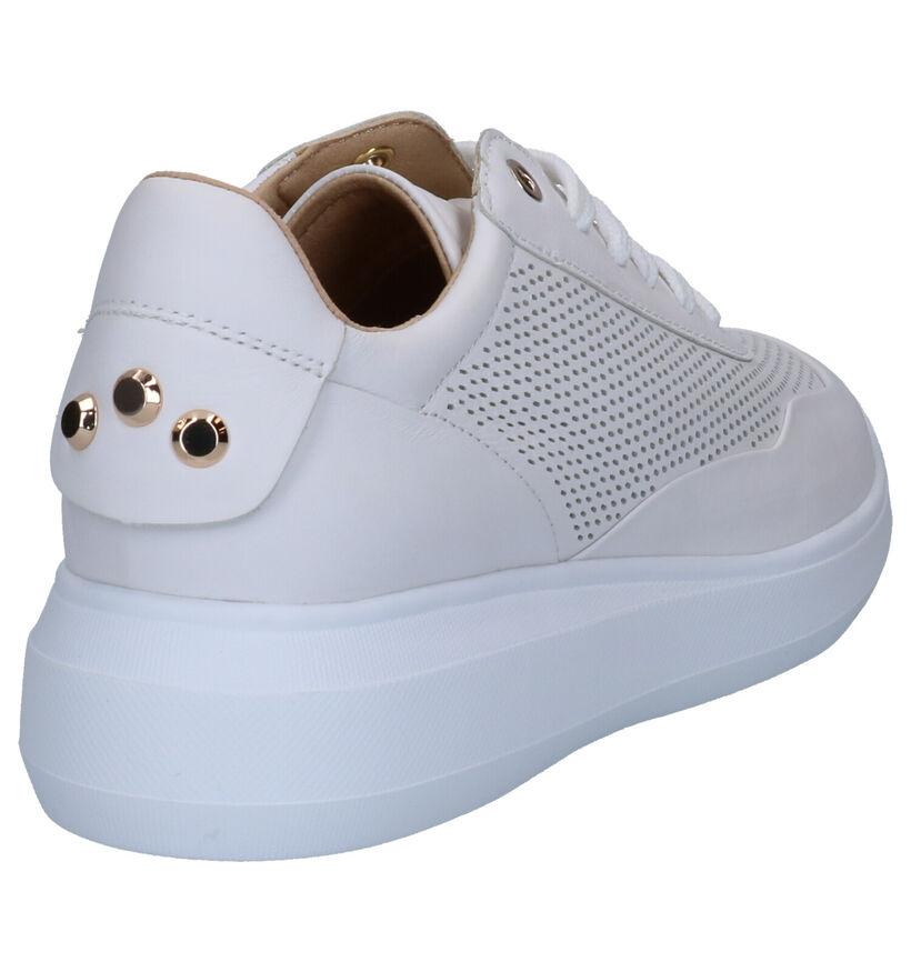 Geox Chaussures à lacets en Blanc en cuir (266825)