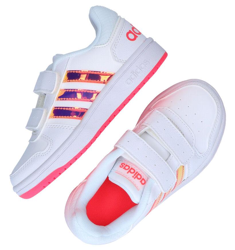 adidas Hoops Baskets en Blanc en simili cuir (276580)