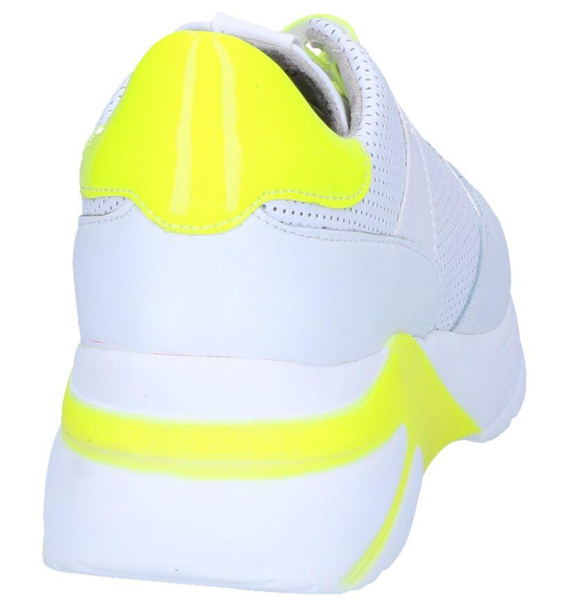 Tamaris Baskets basses en Blanc en cuir (261868)