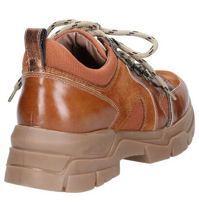 NeroGiardini Cognac Sneakers in leer (262497)