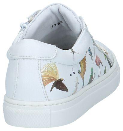 Hampton Bays Witte Sneakers Rits/Veter met Tekening Dieren in leer (213237)
