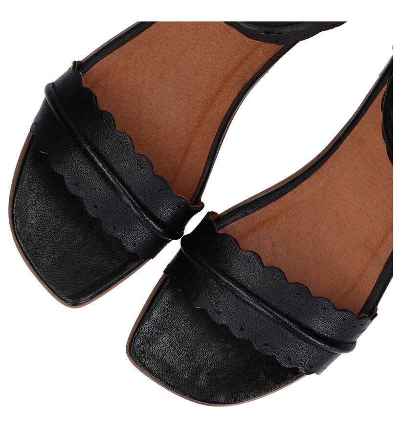 Relance Zwarte Sandalen in leer (293215)