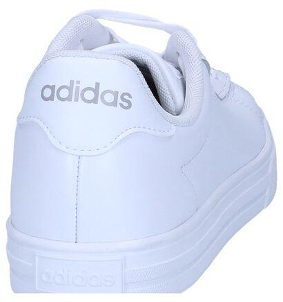 adidas Daily 2.0 Baskets en Blanc en cuir (237045)
