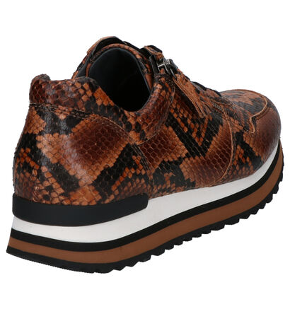 Gabor Bruine Sneakers in imitatieleer (260224)