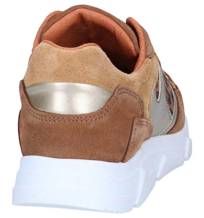 Cognac Sneakers Tango Kady in daim (263386)