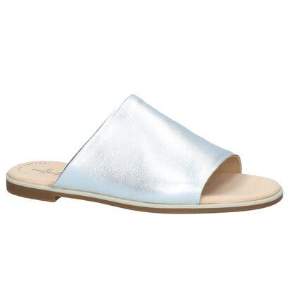 Zilveren Slippers Clarks Bay Petal in leer (241582)