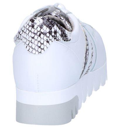 Tamaris Chaussures à lacets en Blanc en cuir (256073)