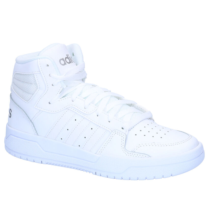 adidas Entrap Baskets en Blanc en cuir (276447)