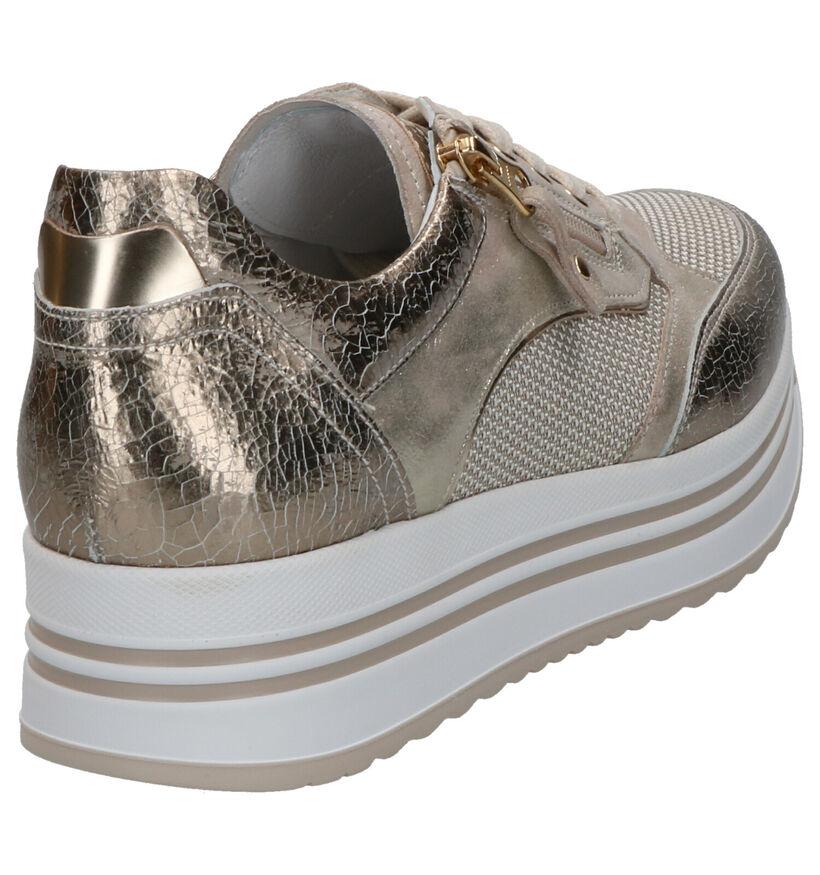 NeroGiardini Gouden Sneakers in leer (270586)