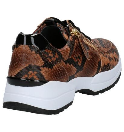 Gabor Comfort Chaussures basses en Rouge en cuir (260105)