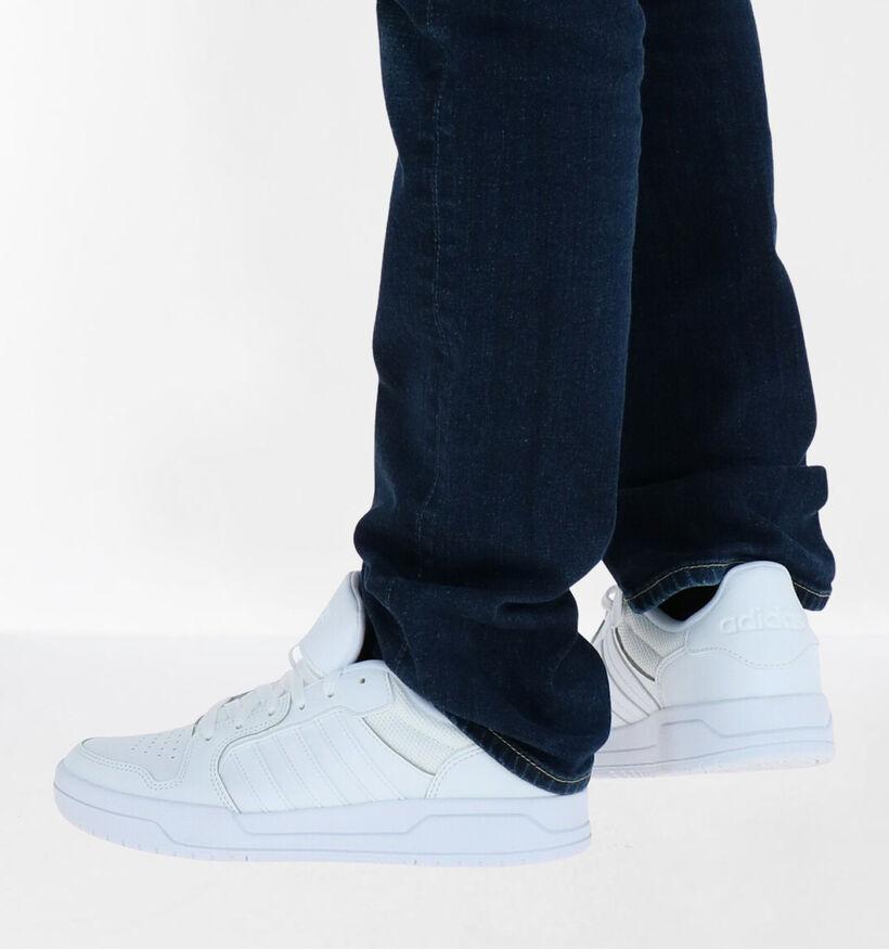 adidas Entrap Witte Sneakers in kunstleer (276464)