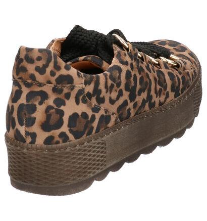 Gabor Comfort Chaussures à lacets en Marron en daim (260097)