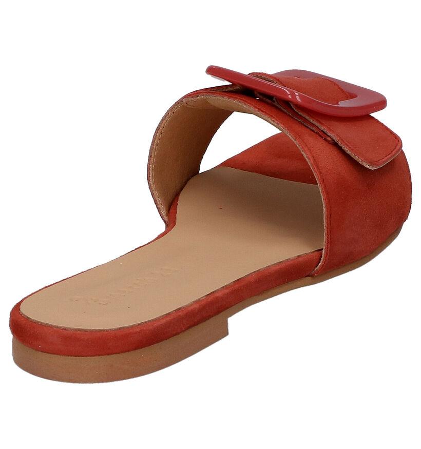 March23 Canada Oranje Slippers in daim (269419)