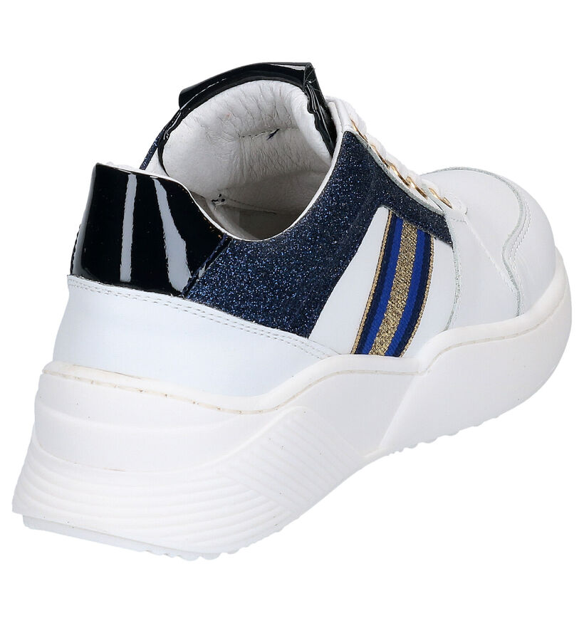 Hoops Baskets basses en Blanc en cuir (266795)