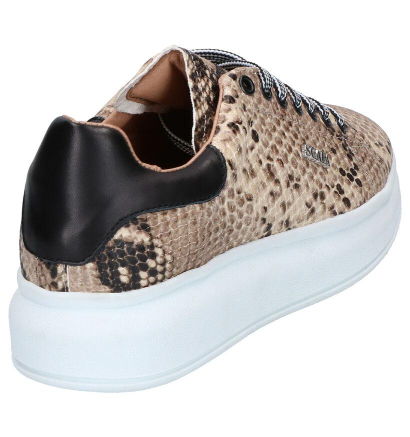Scapa Chaussures à lacets en Beige en cuir (263820)
