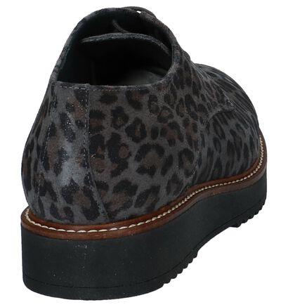 Hee Chaussures à lacets en Gris foncé en daim (227019)
