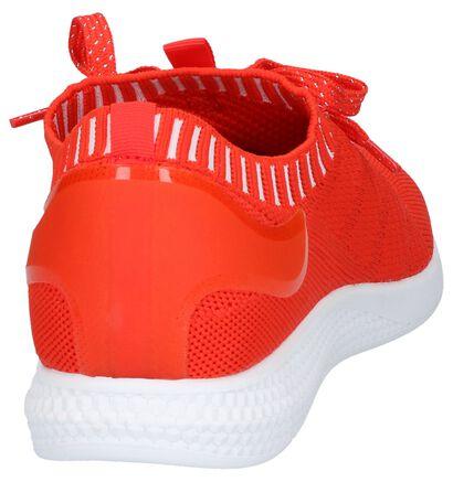 Zwarte Sneakers Dazzle in stof (239190)