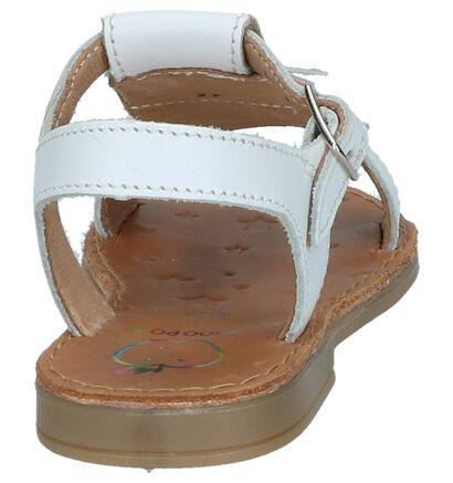 Shoo Pom Sandales en Blanc en cuir (242886)