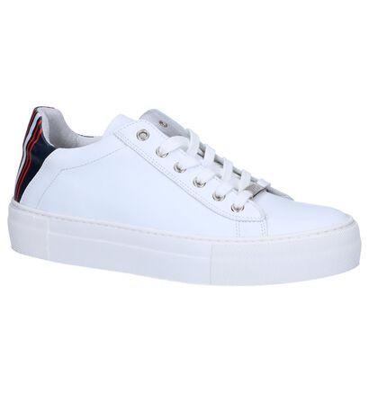 Wit/Gele Lage Sneakers Hampton Bays , Wit, pdp