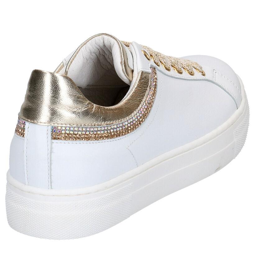 Hoops Baskets basses en Blanc en cuir (266798)