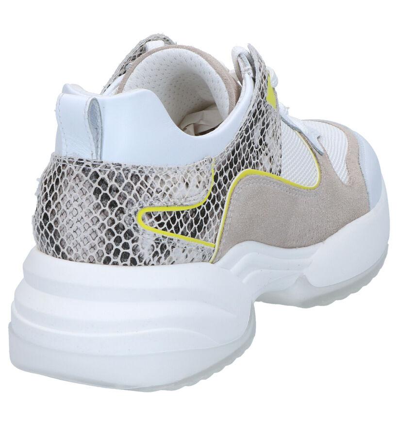 NeroGiardini Chaussures à lacets en Blanc en cuir (273085)