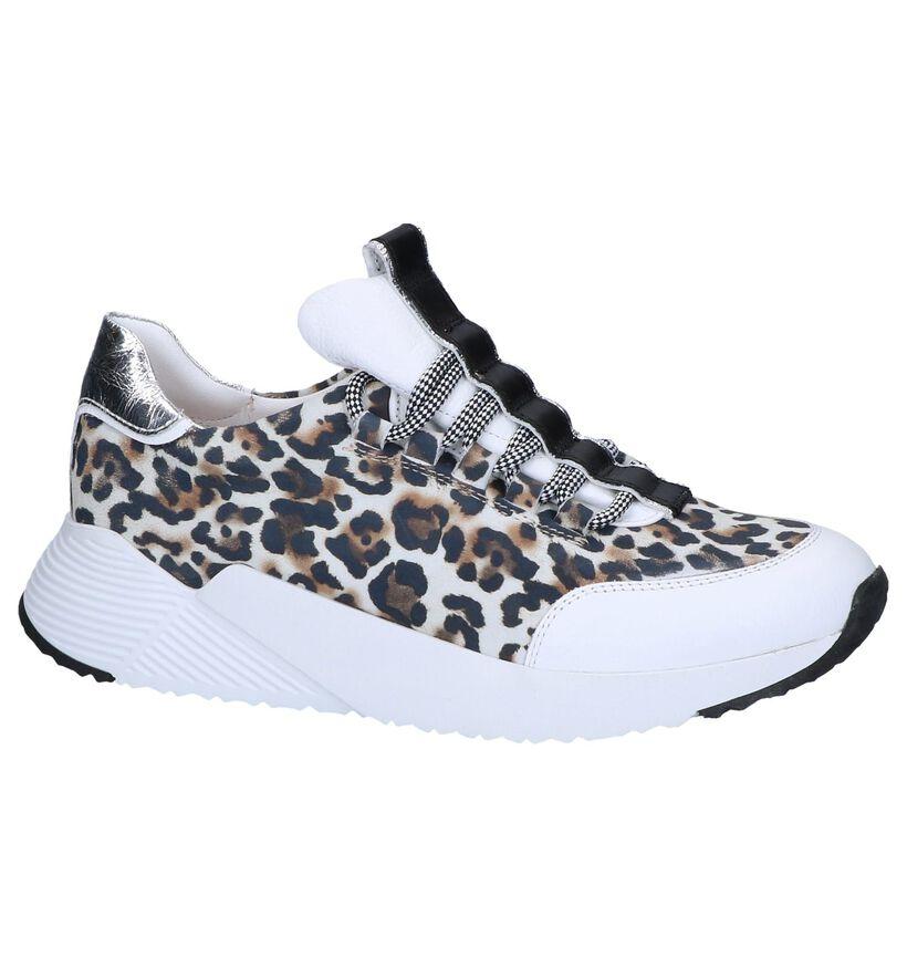 Meerkleurige Sneakers Maripé in leer (248829)