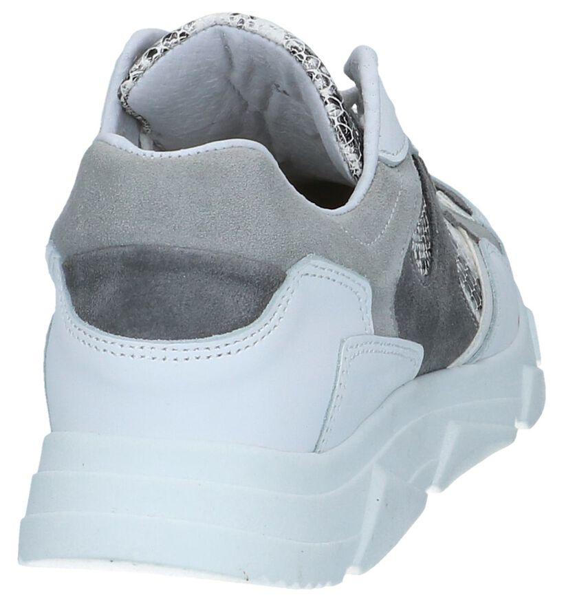Witte Slangenprint Sneakers Tango Kady 1 in daim (252195)