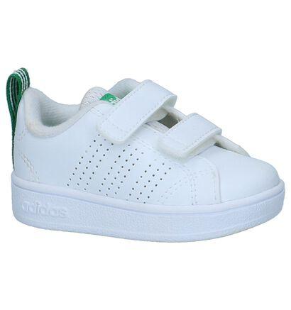 adidas Advantage Clean Baskets basses en Blanc en simili cuir (237173)