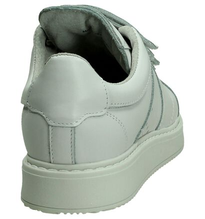 Shoecolate Baskets basses  (Blanc), Blanc, pdp