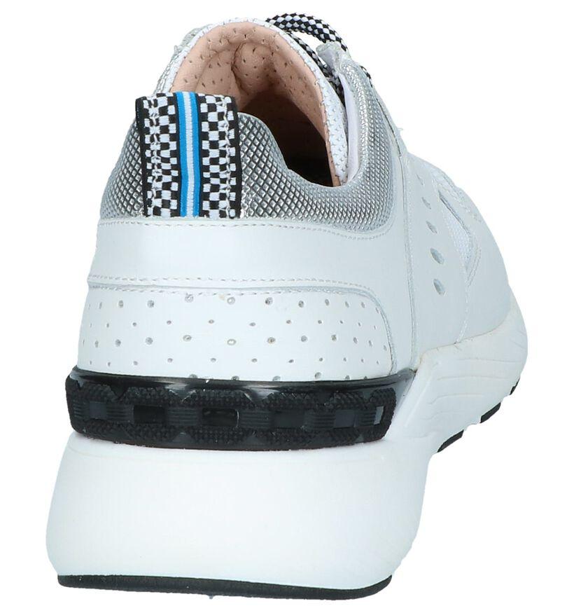 Maripé Baskets basses en Blanc en cuir (248834)