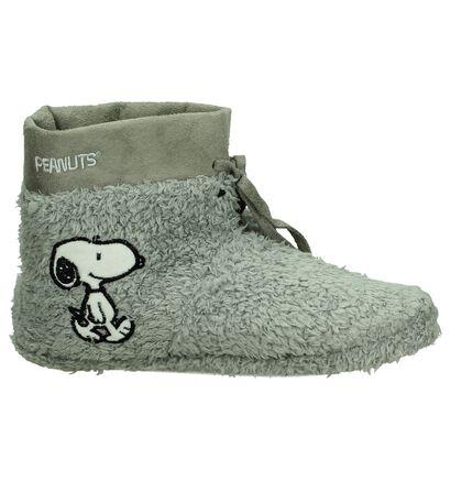 Grijze Snoopy Pantoffels Gesloten, Grijs, pdp