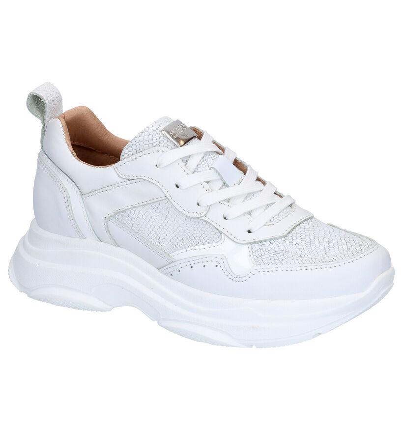 Scapa Chaussures à lacets en Blanc en cuir (270350)