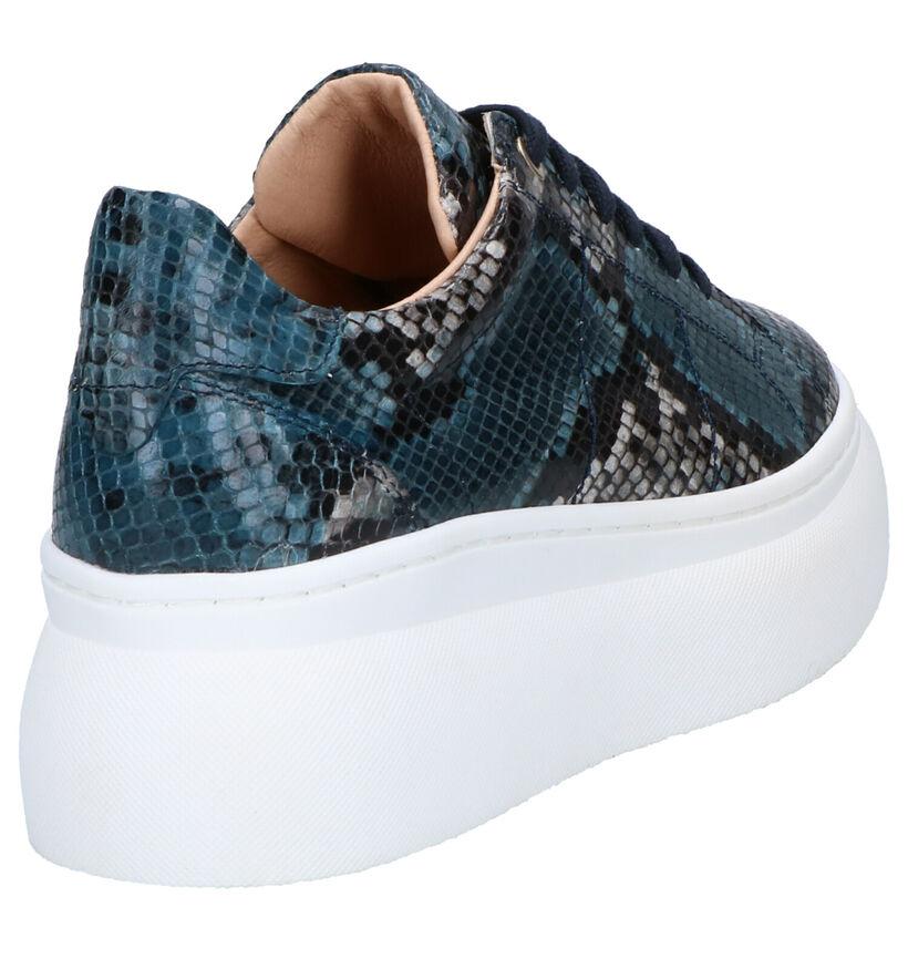 Frida Montana Chaussures à lacets en Bleu en cuir (262447)